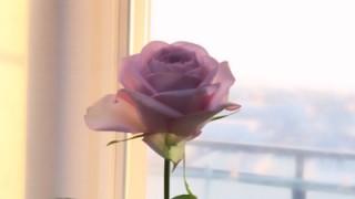 【ご感想】薔薇の魔法・家族カルマ解消