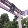 昨日の晴明神社