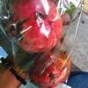 真っ赤な果実。
